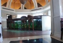 SRL-Bar aquarium